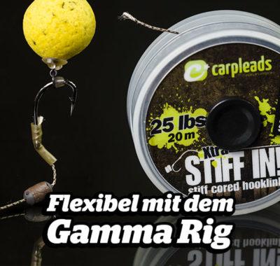Das Gamma Rig