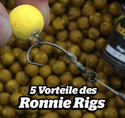 5 Vorteile Ronnie Rig